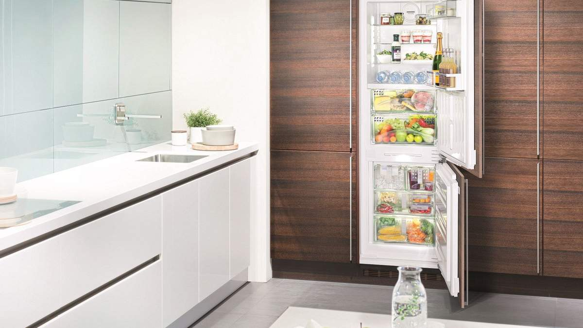 Звичайний чи вбудований холодильник: що вибрати