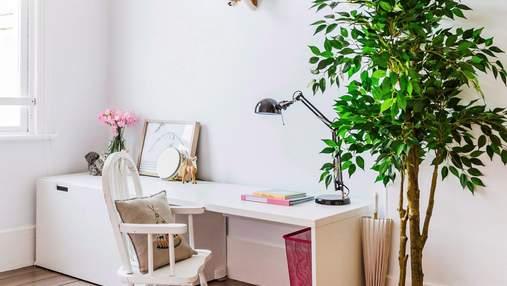 Комнатные растения в интерьере квартир: 4 причины, почему они нужны