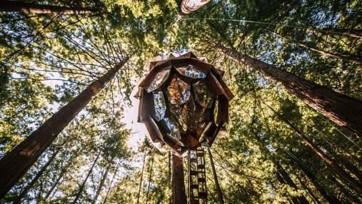 Каюта-ананас для сну у лісі: як виглядає сучасний будиночок на дереві